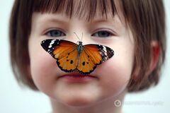 девочка, бабочка