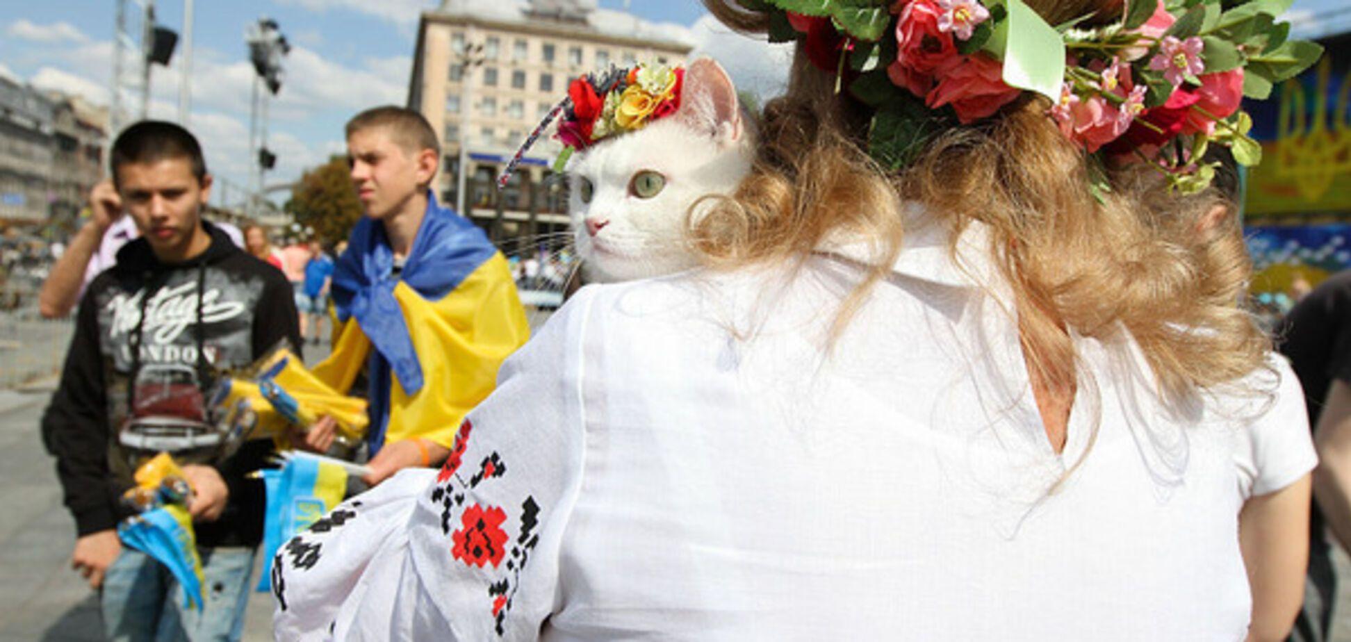 Мухи окремо, котлети окремо: пост про немудрість українців сколихнув мережу