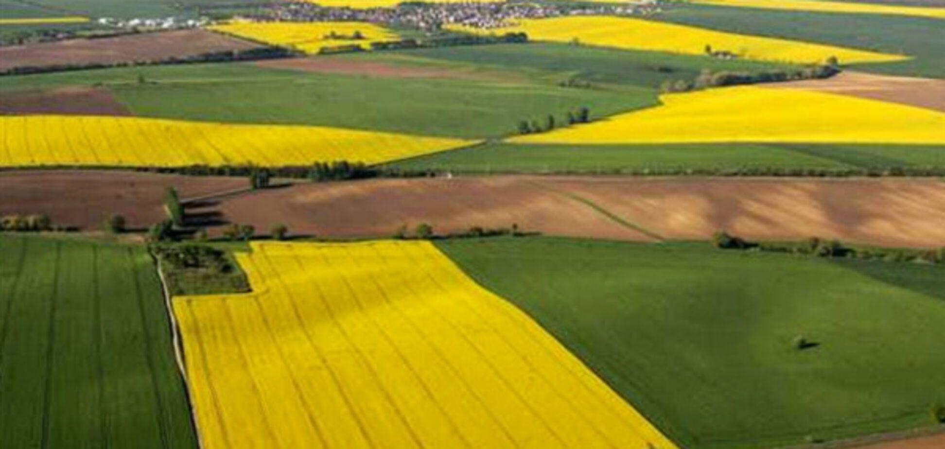 Бахматюк о рынке земли: нарезать участки по 200 га – это полушаги