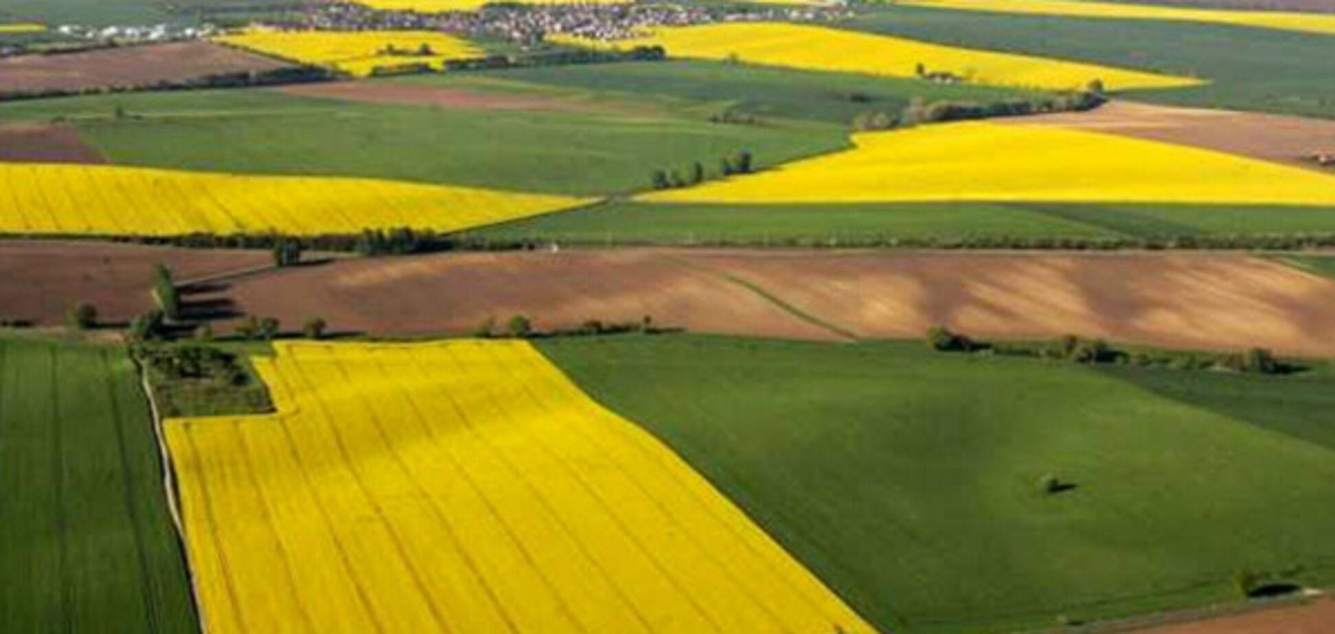 Нова модель земреформи від Кабміну дозволить фермерам вигідно купити землю