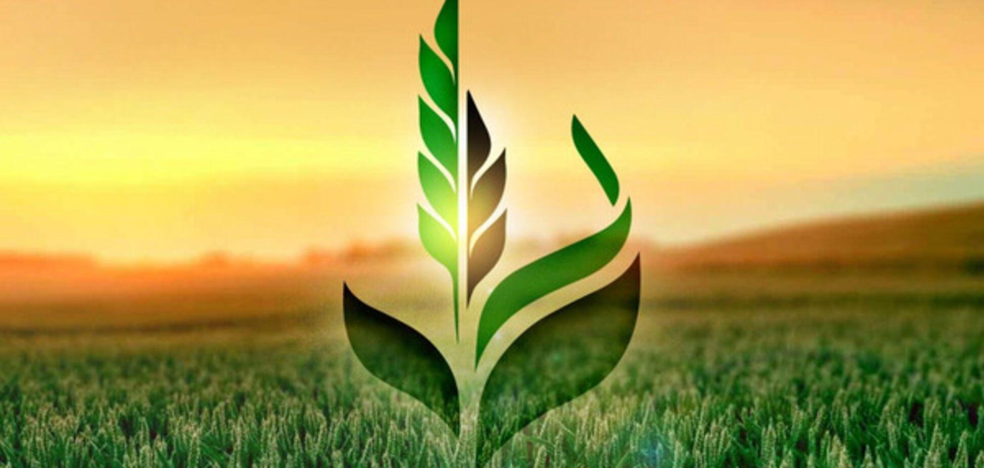 Кабмін затвердив фінансовий план Аграрному фонду на 2017 рік
