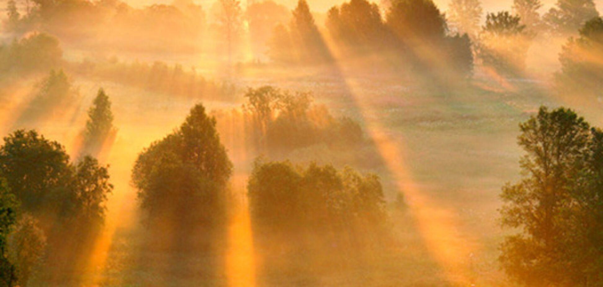 сонце світанок