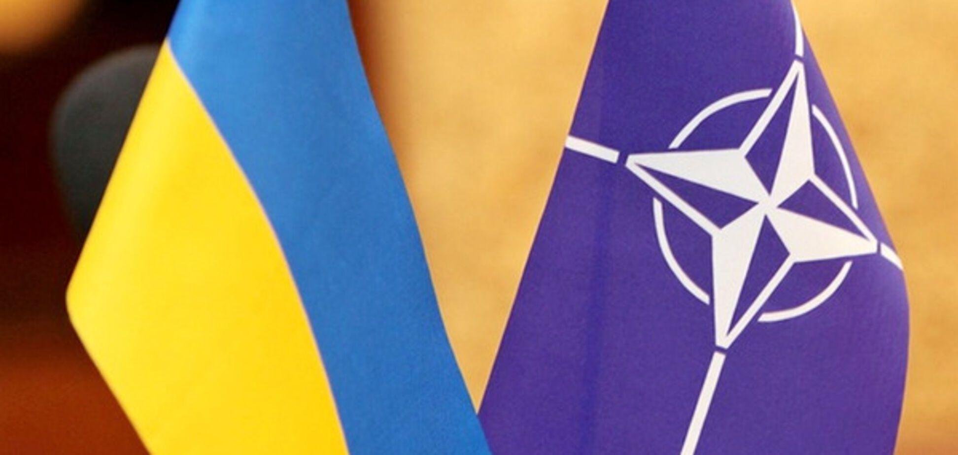 Украина НАТО флаги