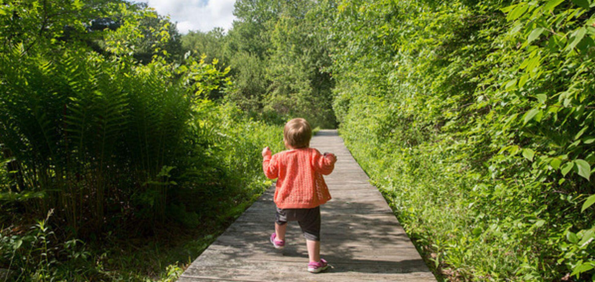 Як захиститися від укусів комах: Комаровський назвав важливі рекомендації