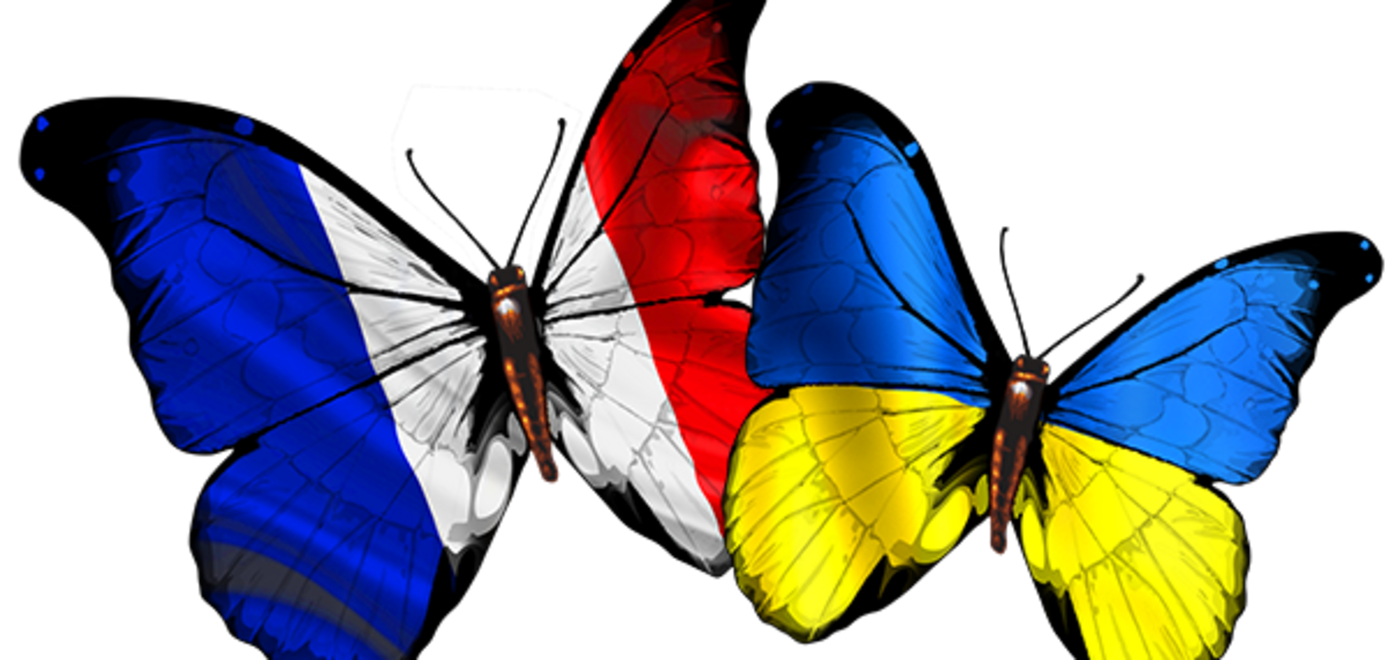 Чем Украина отличается от Франции