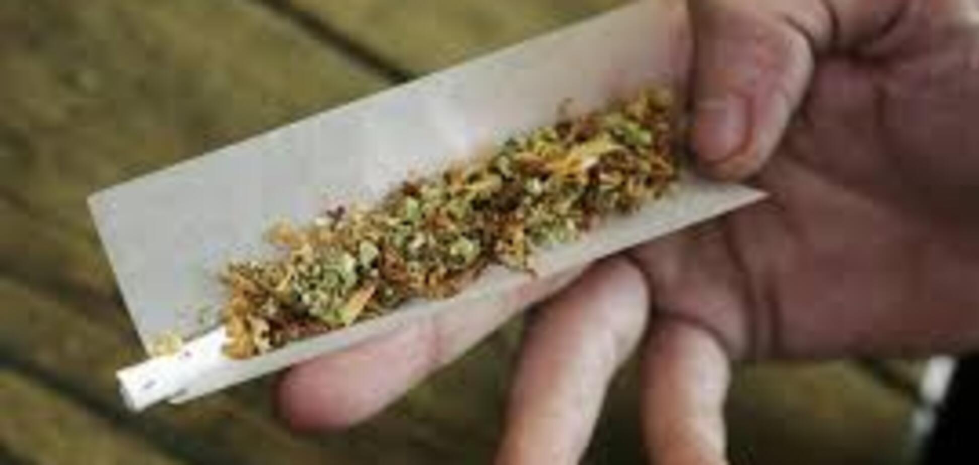 В Запорожской области изъяли наркотиков на 100 тысяч гривен