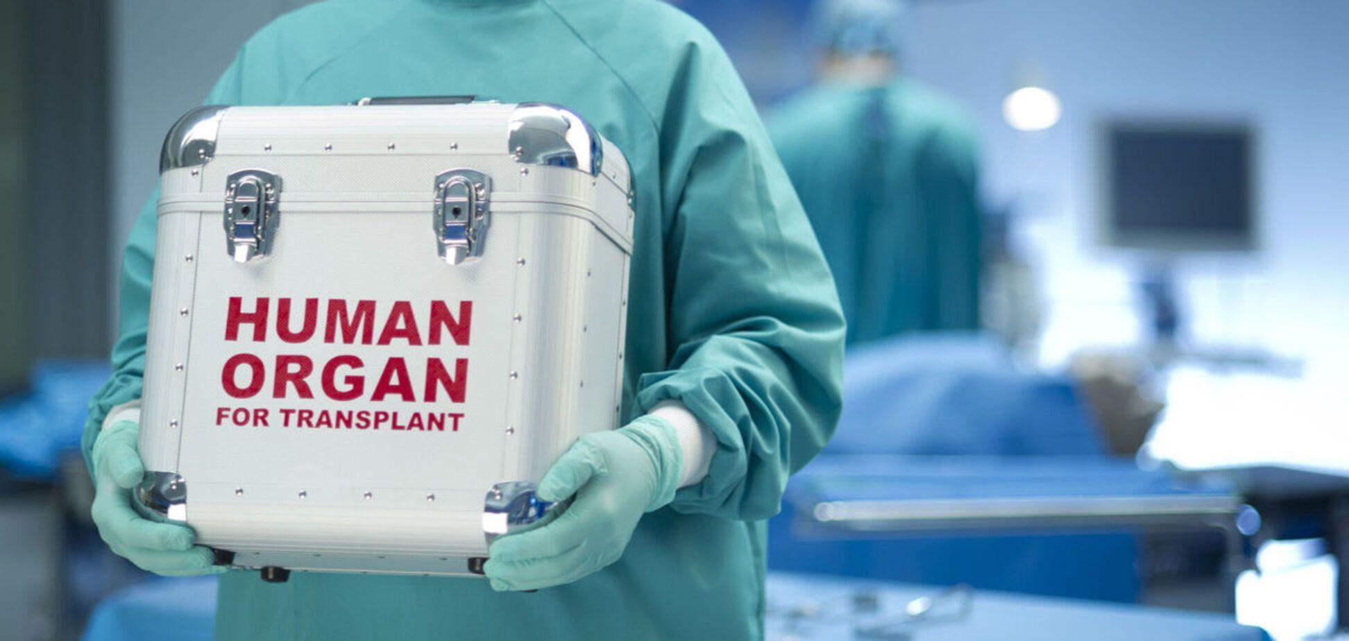 Скільки коштує: журналісти назвали ціни на органи людини