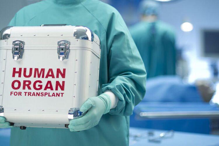 Скільки коштує  журналісти назвали ціни на органи людини ... 5ad7886f9fc84
