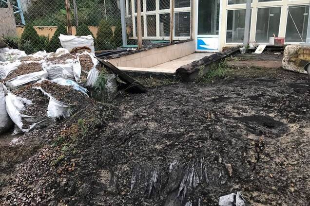 Родилась под счастливой звездой: в дом известной украинской певицы попала молния