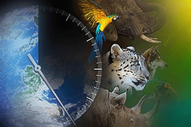 Ученые спрогнозировали шестое массовое вымирание на Земле
