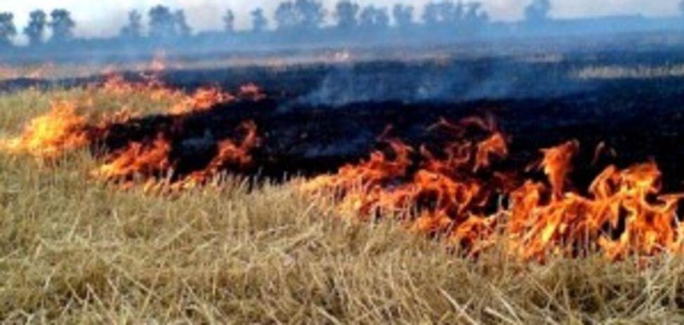 Взрывы и пожар на военных складах в Мариуполе: озвучена главная версия