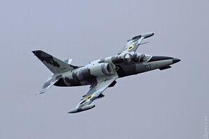 Авіакатастрофа військового літака під Хмельницьким: названа ймовірна версія ПП