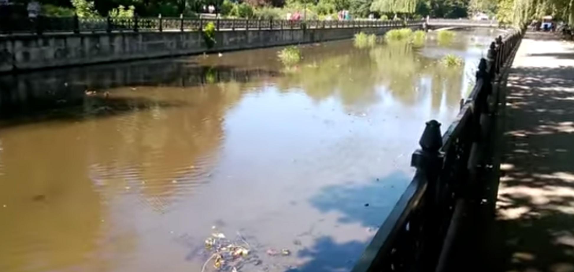 Сміття, бруд, сморід: у мережі показали, до чого довела Крим Росія