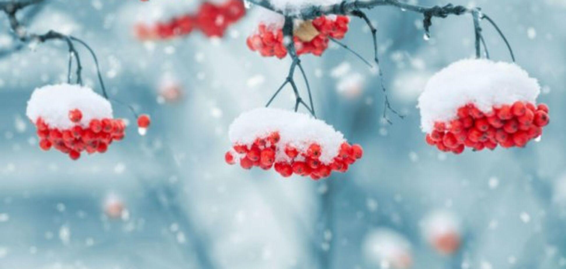 ТОП-5 самых полезных продуктов зимы