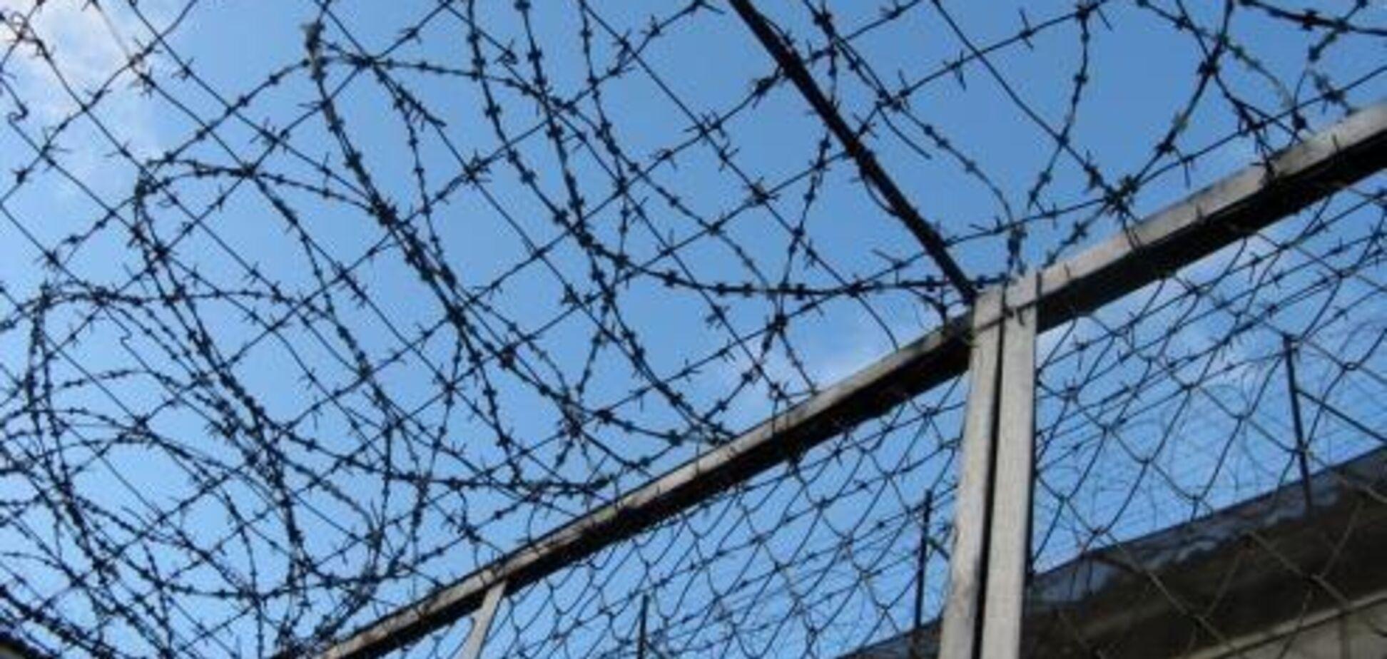 Что такое свобода под небом в клеточку