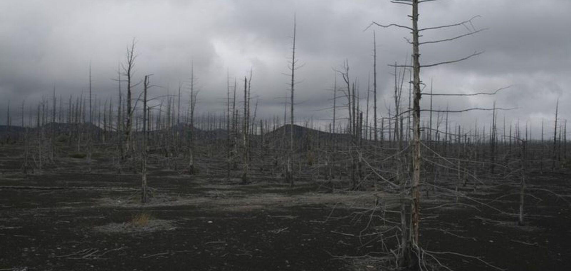 Нове лихо в Криму: екологи забили на сполох
