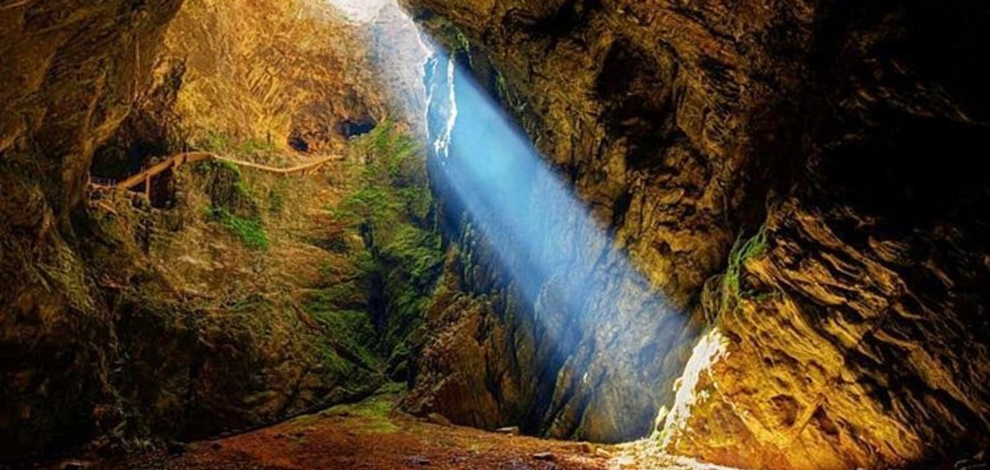 Вийшло на приманку: вчені виявили раніше невідому печерну істоту