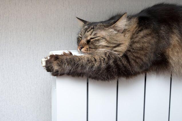 Кабмин запретил отключать газ зимой