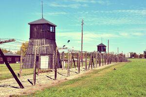 День пам'яті жертв Голокосту: екскурсія до найбільшого табору смерті СС Майданек