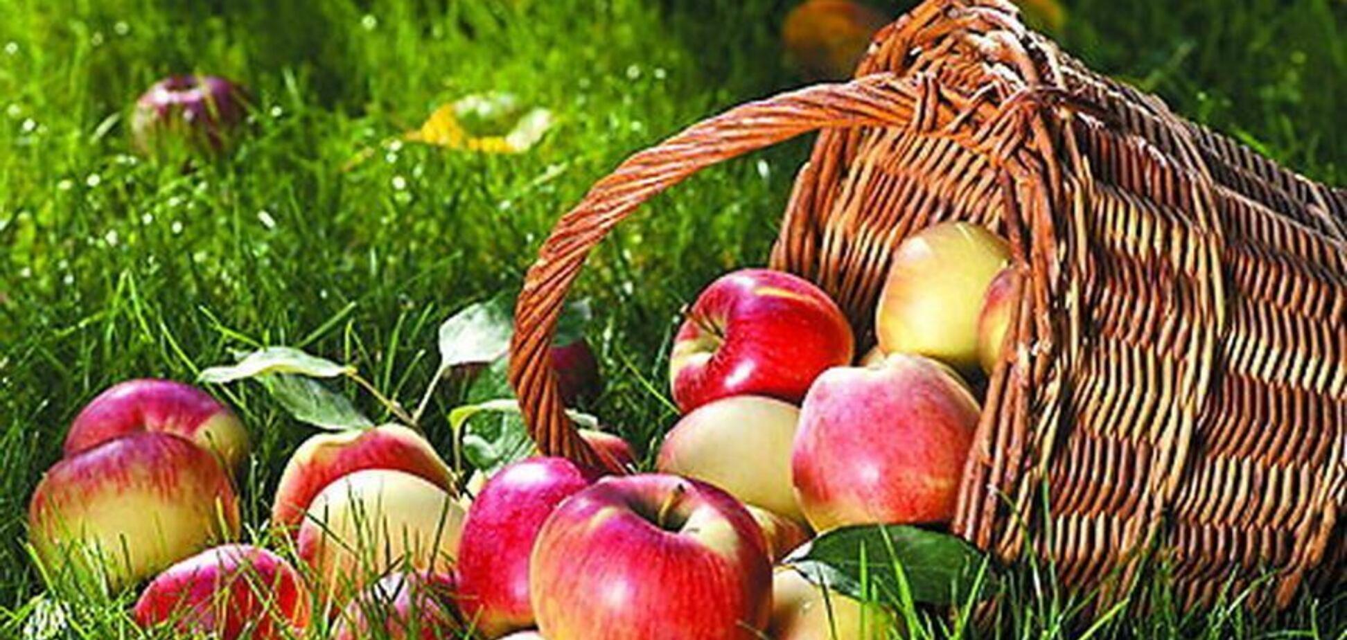 Ви впевнені, що знаєте про яблука все?
