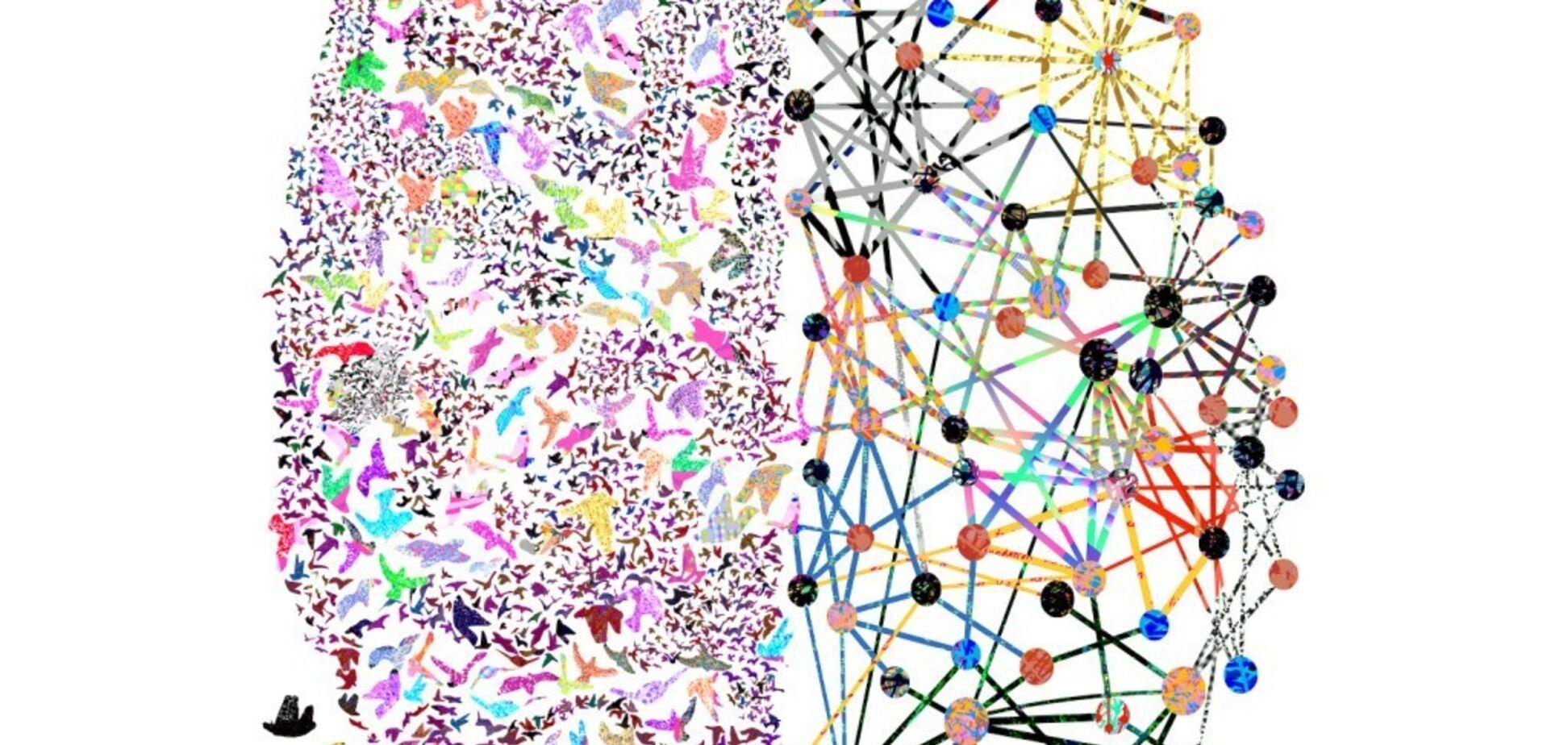 Чем интернет опасен для нашего мозга?