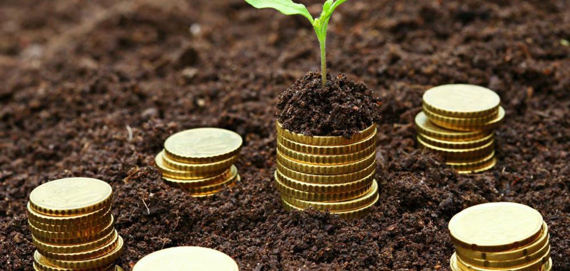 Як ростиме економіка України: озвучено прогноз на найближчі роки