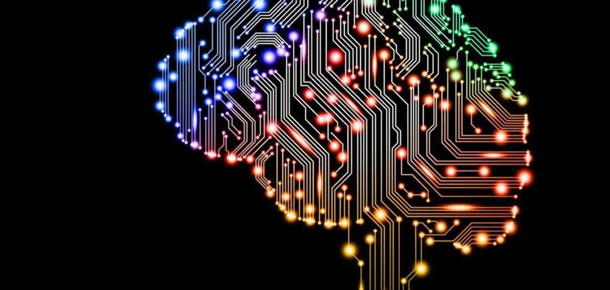 Працює, як справжній: вчені виростили 3D-модель мозку