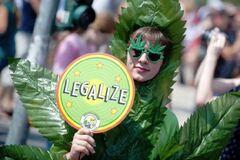 Дозволити в Україні марихуану і повій: лікар виступила з гучною заявою