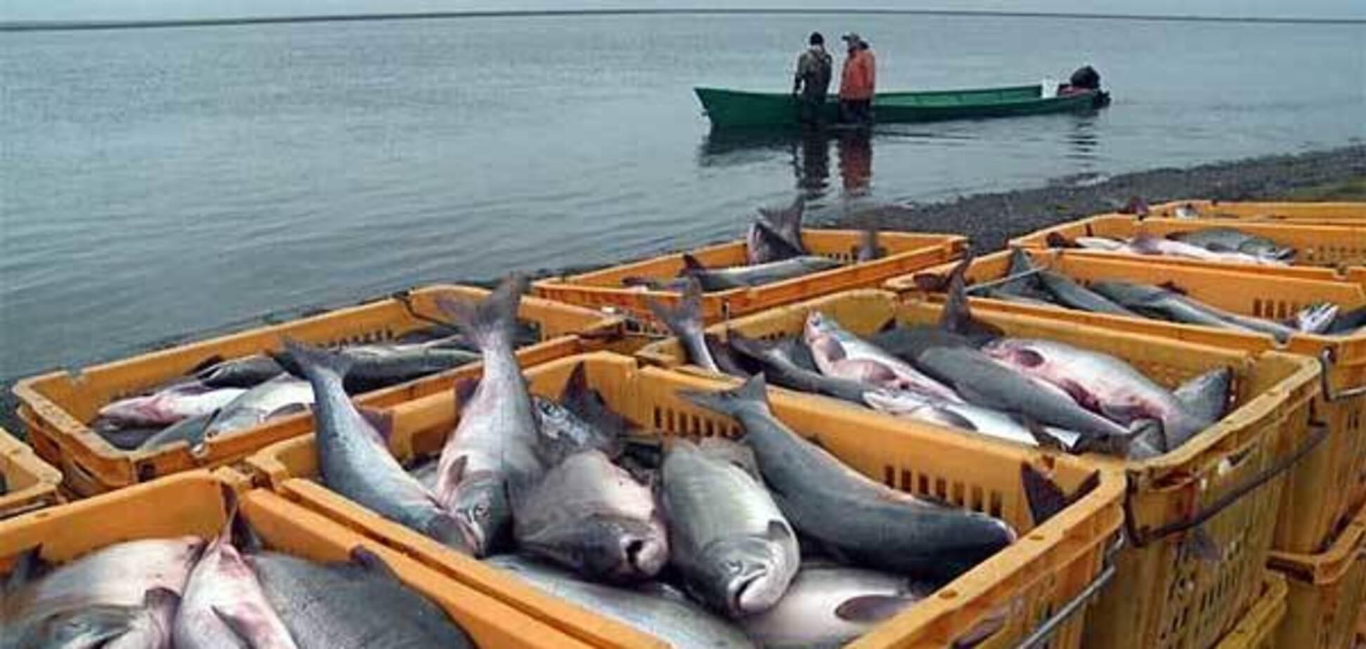 Почему Украина до сих пор делит рыбу с Россией?
