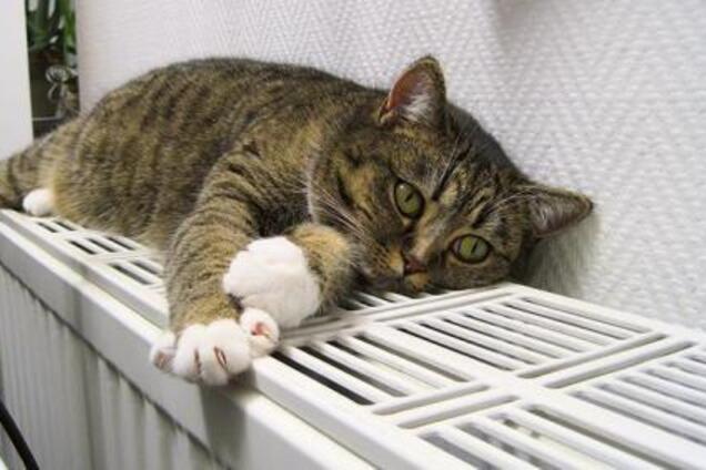Стало известно, когда в Киеве включат отопление