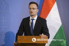 Захват Закарпатья: в Венгрии опровергли ревизионистские планы