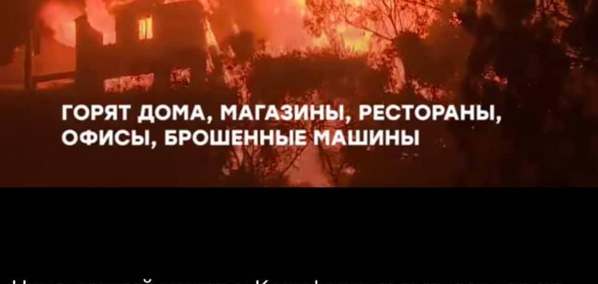 Одичалые: очередное дно русских СМИ