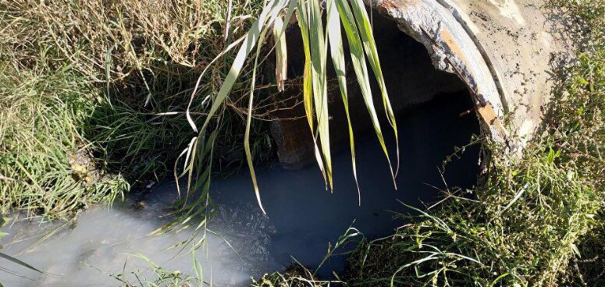 Зливають л*йно: в Криму окупанти влаштували нову екокатастрофу