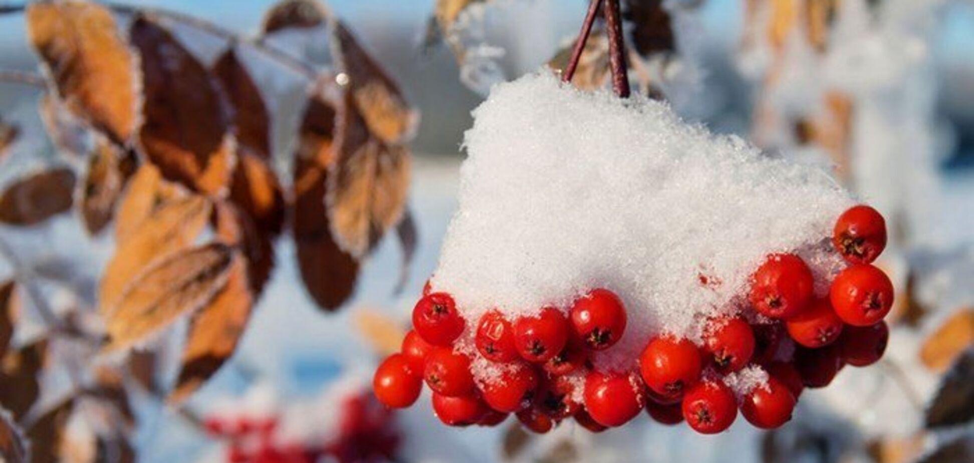 Ще двічі потеплішає: синоптики дали прогноз погоди до кінця листопада в Україні