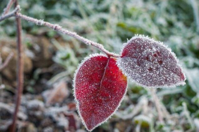 Идут первые морозы: синоптики предупредили о резкой смене погоды в Украине