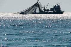 Не можна без дозволу Росії: стало відомо про нову проблему через блокаду Азовського моря