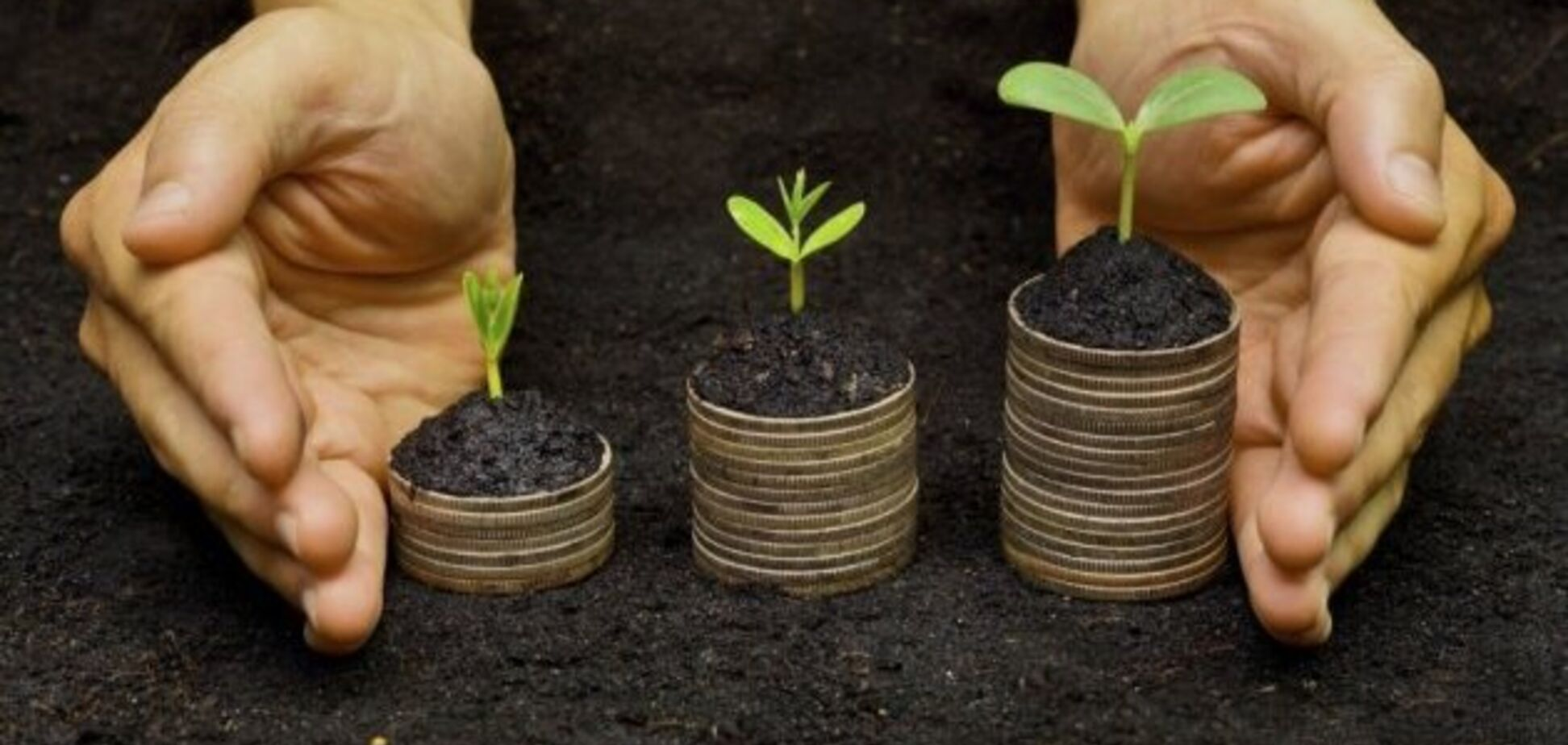 Мораторій на продаж землі в Україні: в Раді анонсували важливе рішення