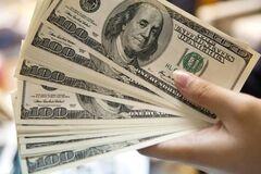 Що буде з курсом долара в Україні: озвучено прогноз на зиму