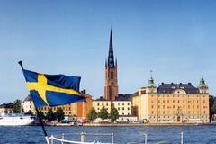 'Українці, дивіться і вчіться': заробітчанин зафільмував незвичний процес у Швеції