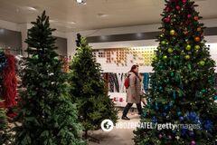 Как выбрать новогоднюю елку: 12 секретов
