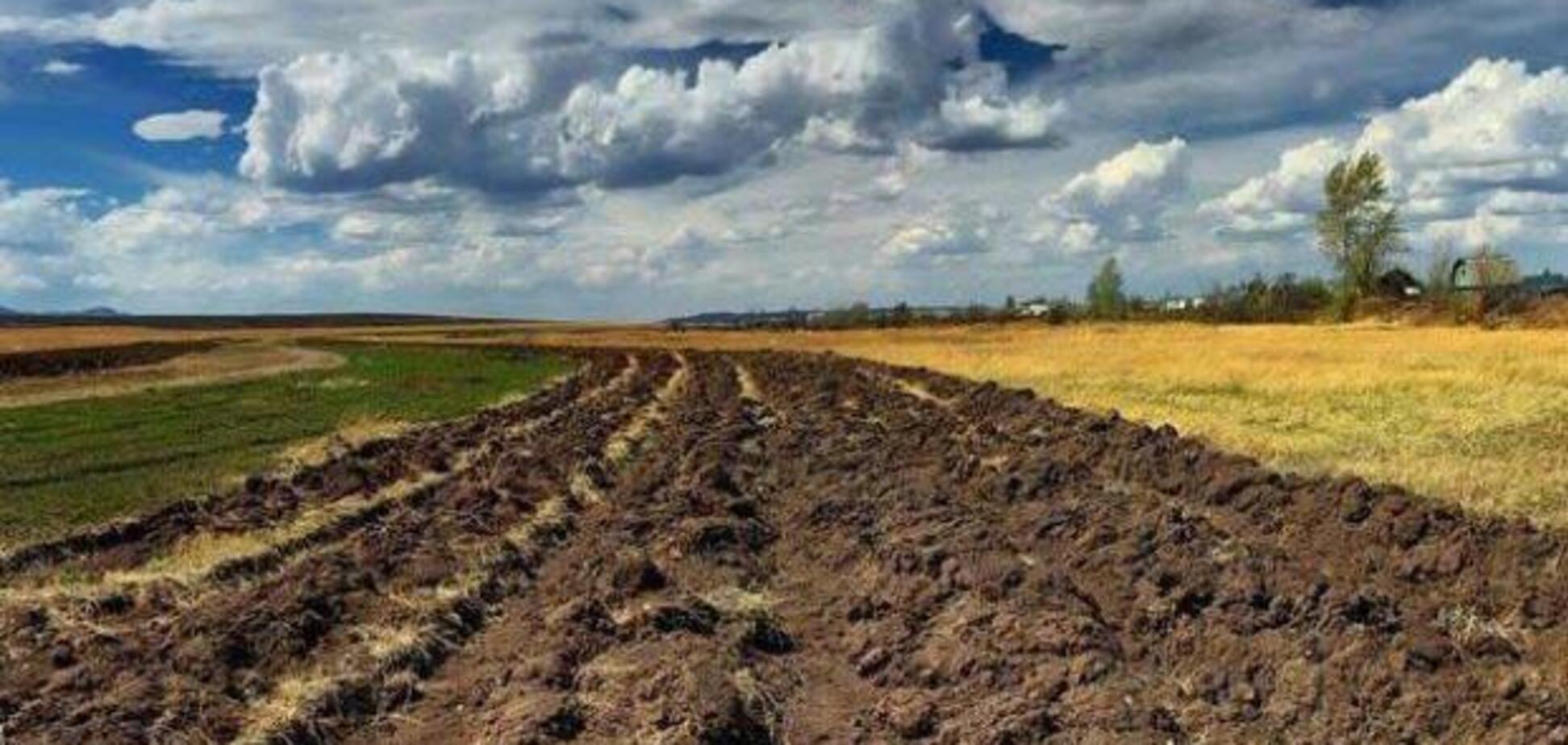 Мораторий на запрет продажи земли: победа оппозиции над ''теневыми'' схемами