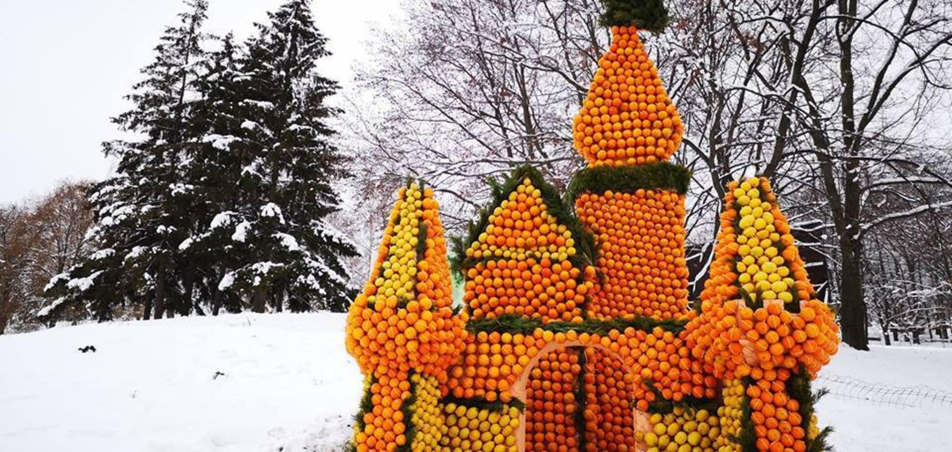 У Києві з'явилося цитрусове королівство: яскраві фото