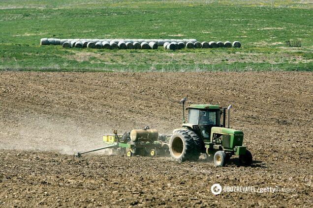 ''Разлетаются как горячие пирожки'': украинцам указали на провал моратория на продажу земли photo