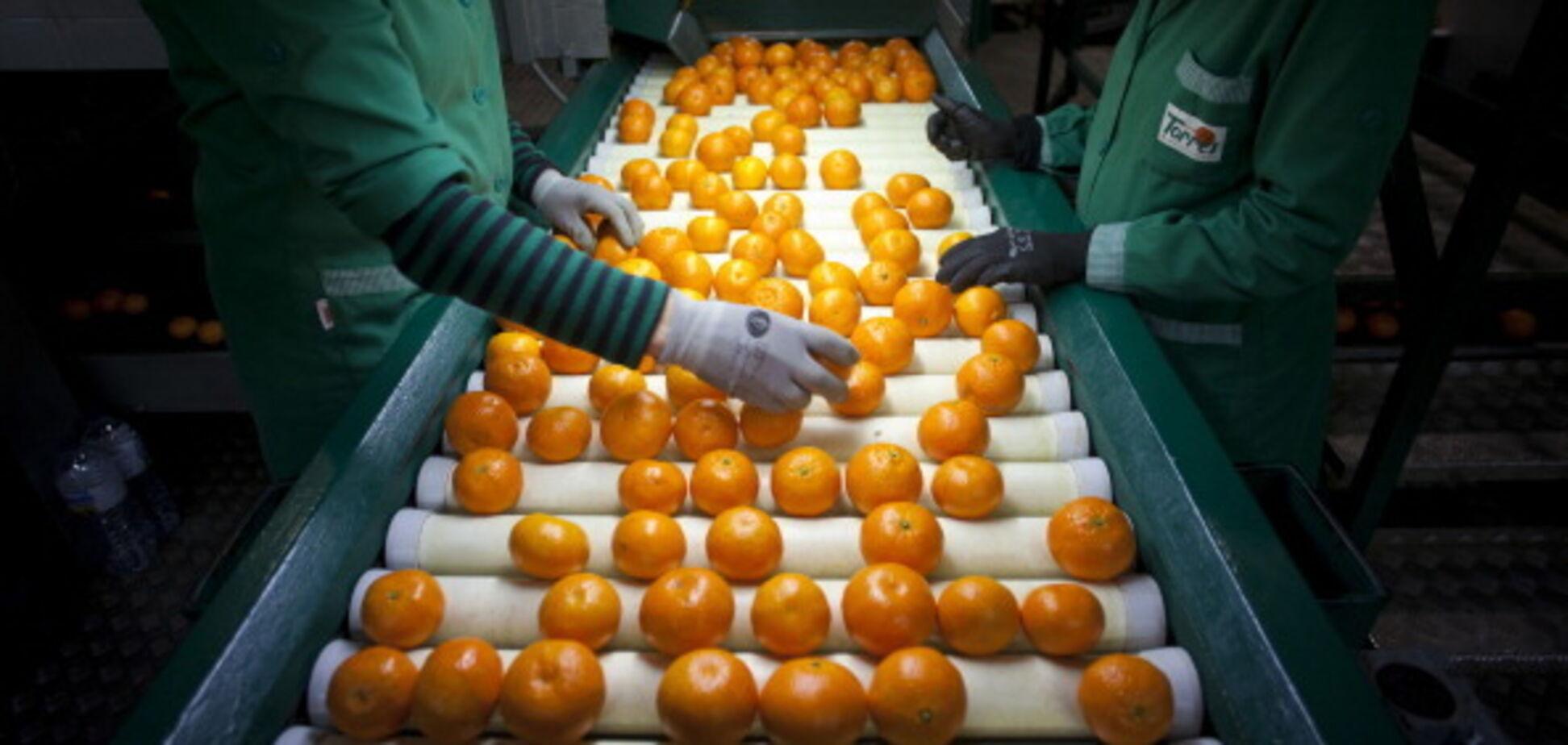 Скільки мандаринів можна їсти без шкоди для фігури: дієтолог дав пораду