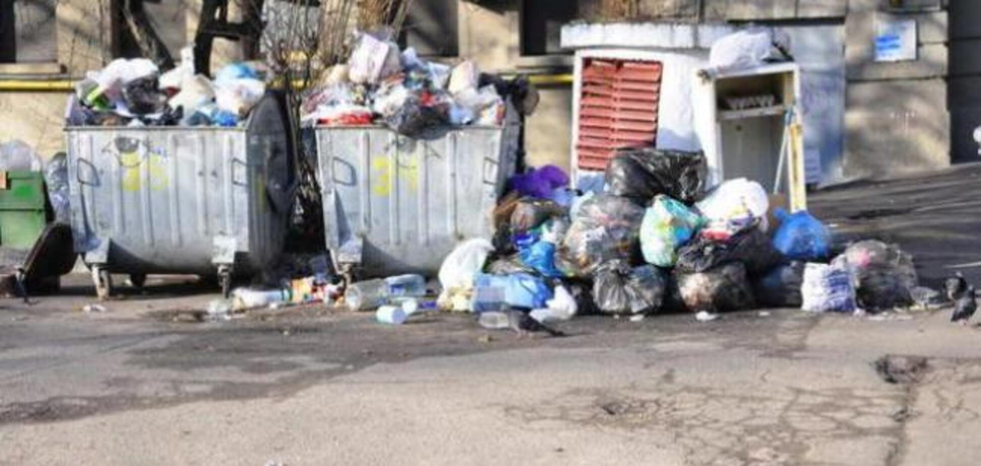На Львовщине мер города обязал депутатов дежурить возле мусорников