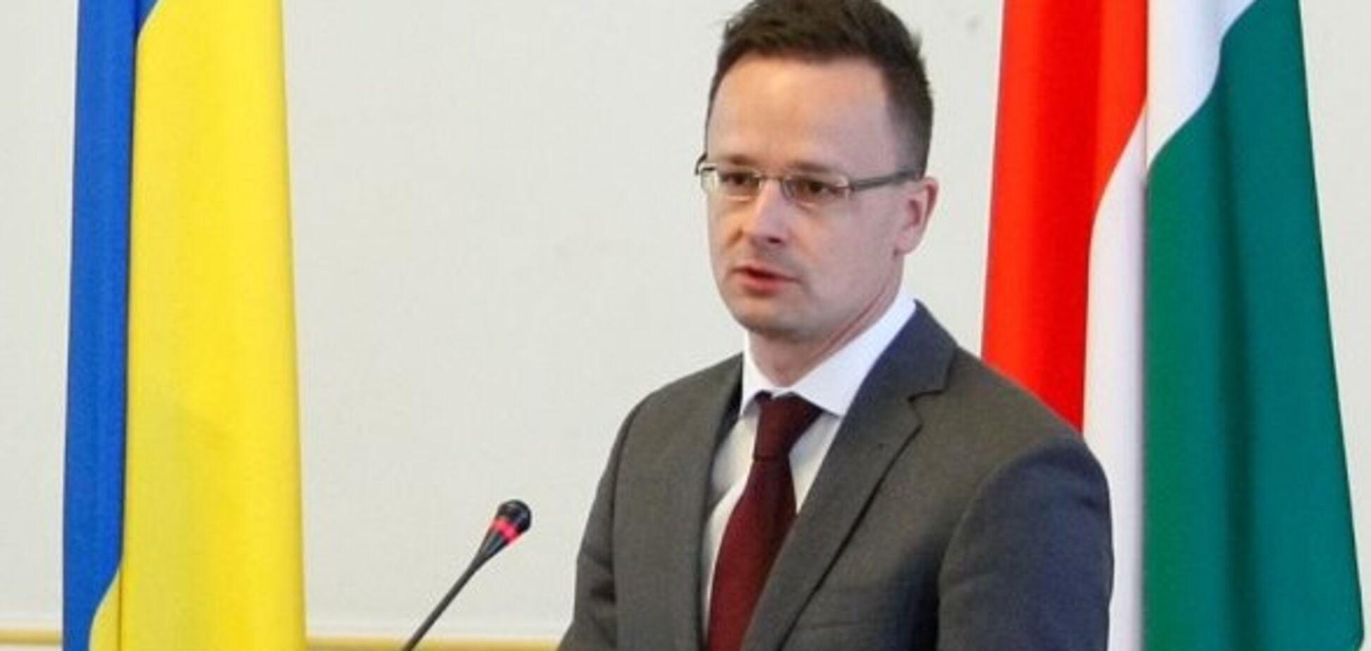 'Перепили вина': Украина ответила Венгрии на требование по Закарпатью