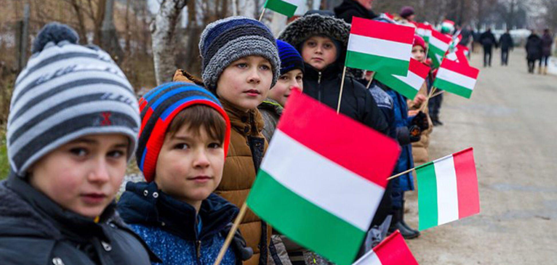 'На Закарпатье нет Украины!' Нардеп сделал громкое заявление