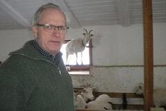 'Дайте денег': бельгиец решил продать ферму в Украине из-за коррупции