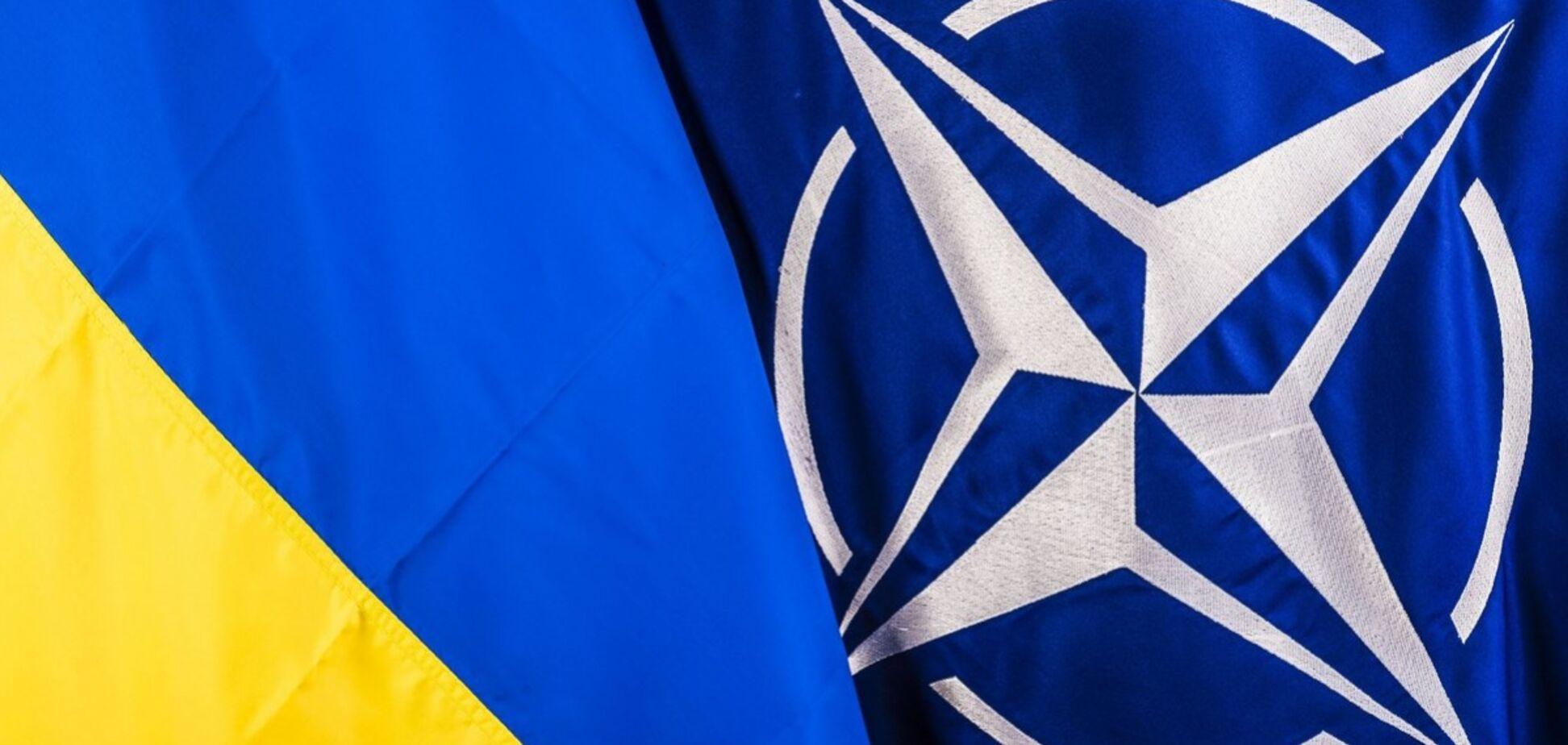 Заявка Украины на вступление в НАТО: появилась противоречивая информация