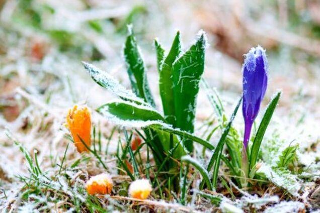 Морозы вернутся: прогноз погоды в Украине до конца апреля